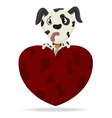 Dalmatian puppy with heart vector image