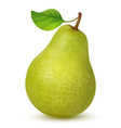 Big green pear with leaf vector image vector image