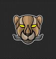 cheetah logo design template cheetah head icon vector image