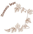pencil hand drawn of hop branch with cones with vector image