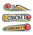 abstract set for cricket game vector image