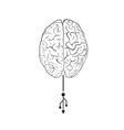 Brain with usb mark vector image
