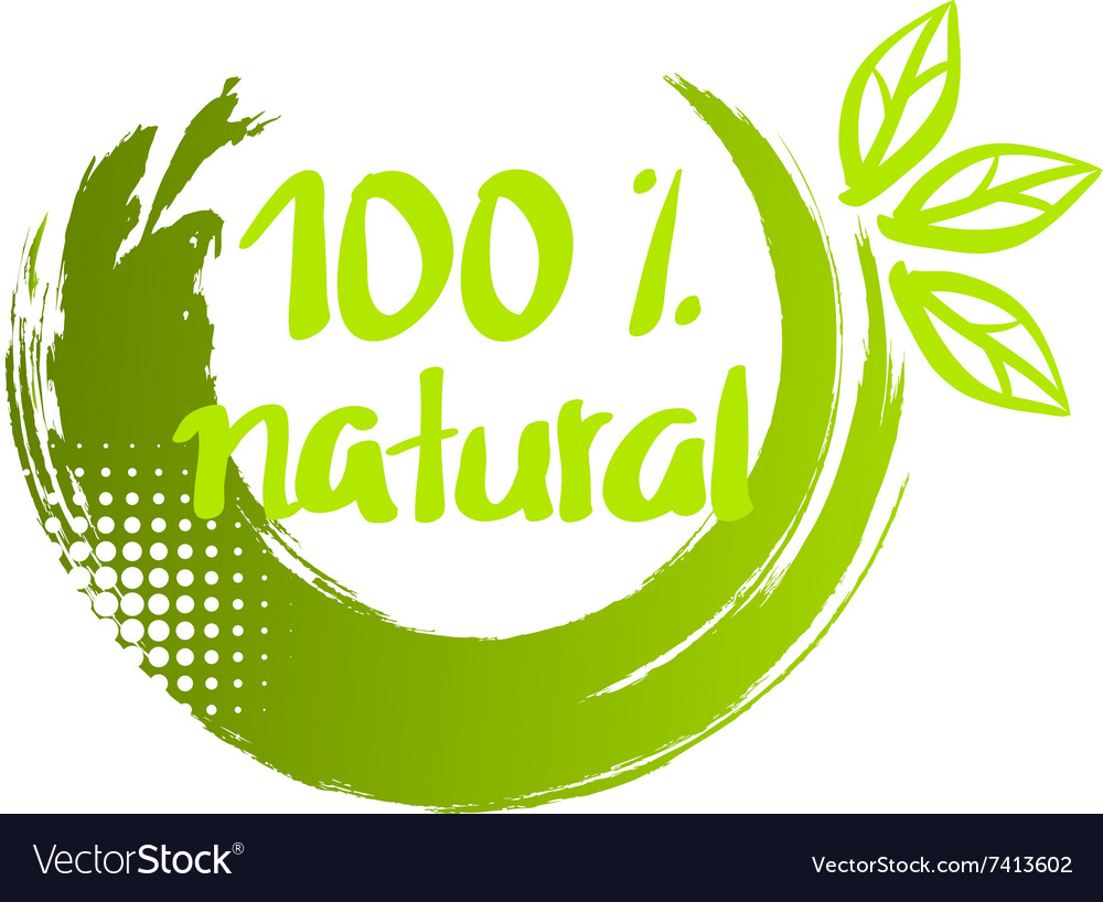 100 natural brush calligraphy vector