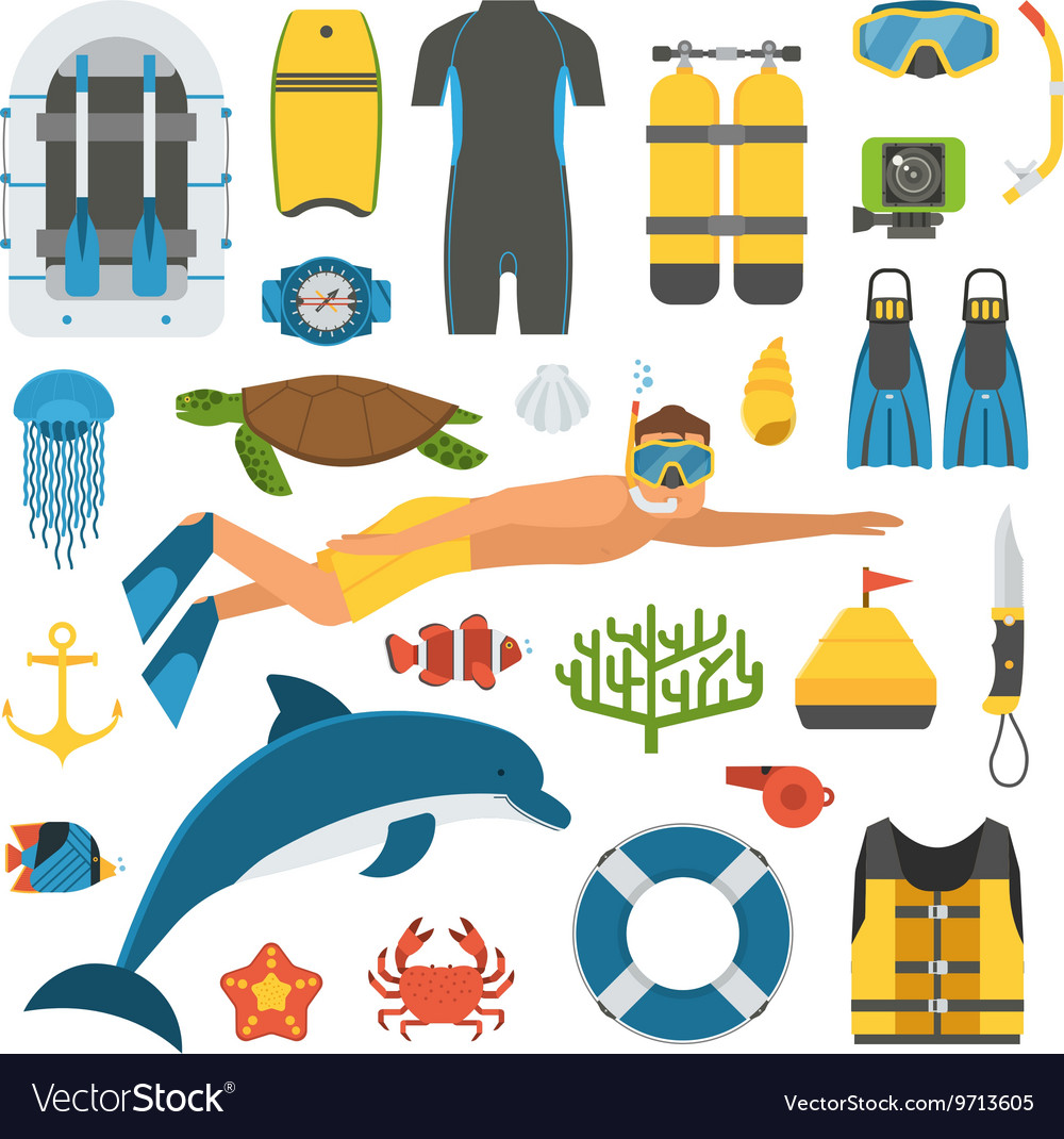 Skin diving and snorkeling set vector