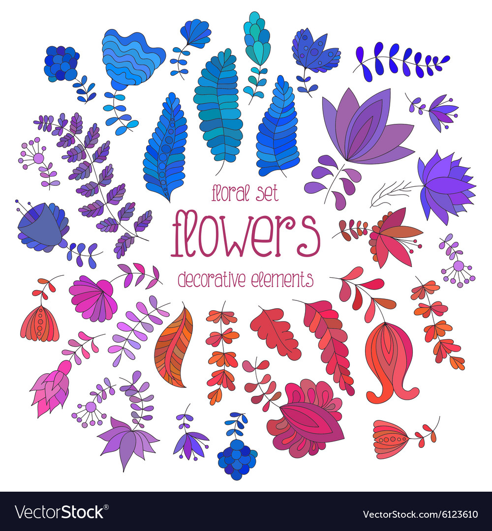 Set of colorful flowers and branches vector