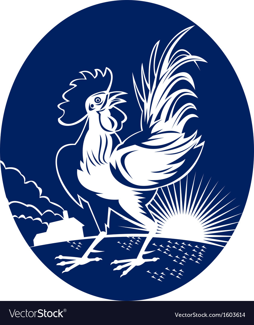 Rooster cockerel crowing with sunburst and house vector