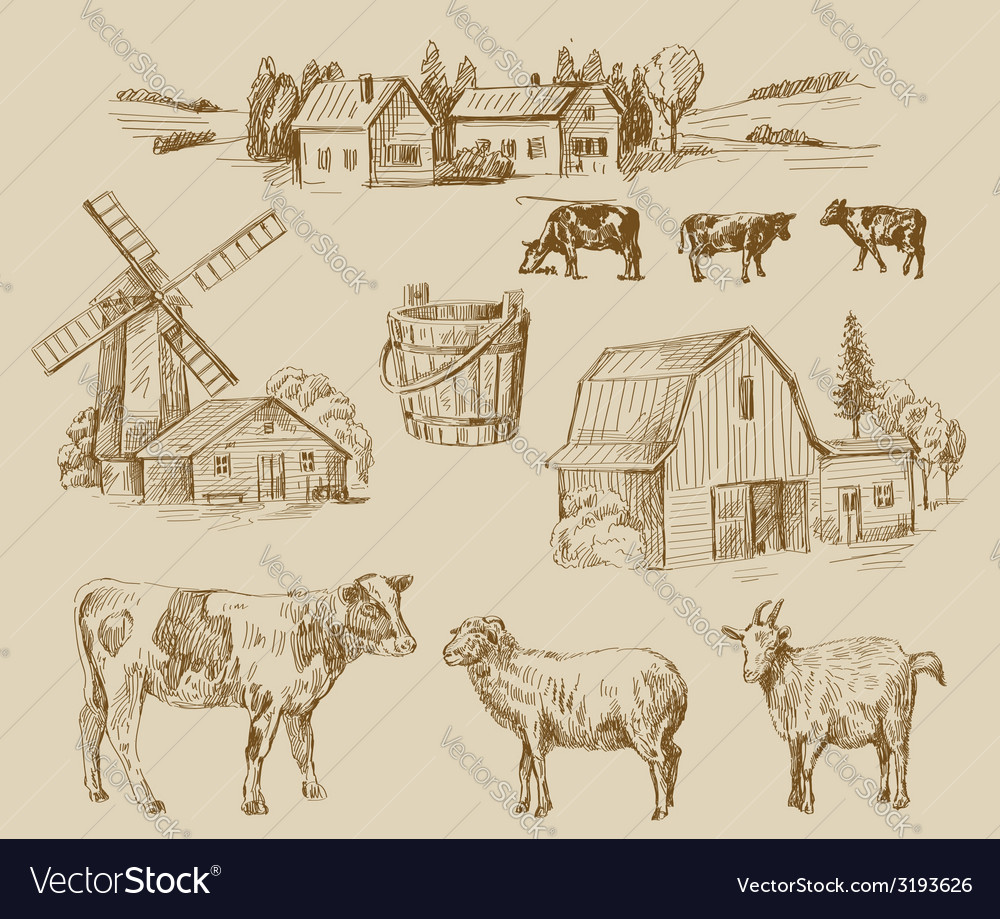 Farm hand drawn vector