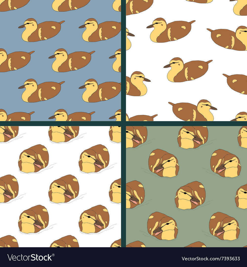 Set of four seamless patterns with cute ducklings vector