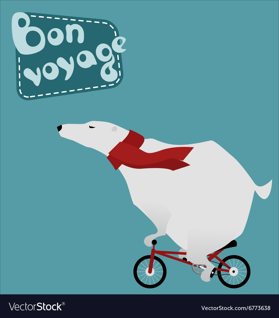 Travel large polar bear on a bicycle vector