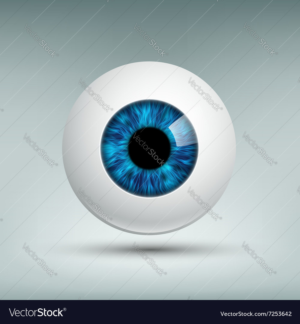 Human eyeball stock vector