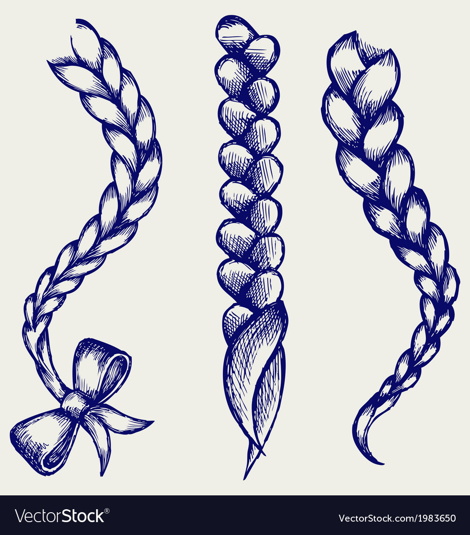 Women braid vector