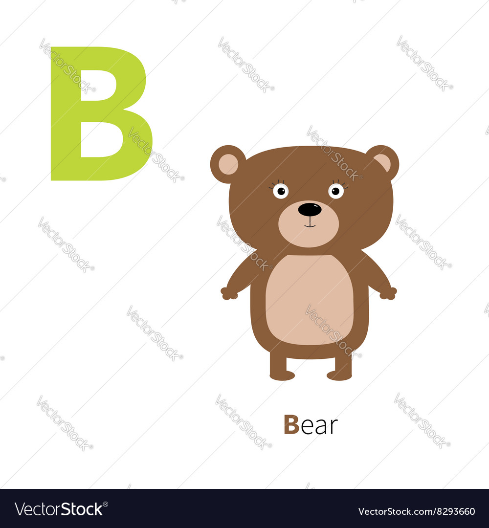 Letter b bear zoo alphabet english abc letters vector