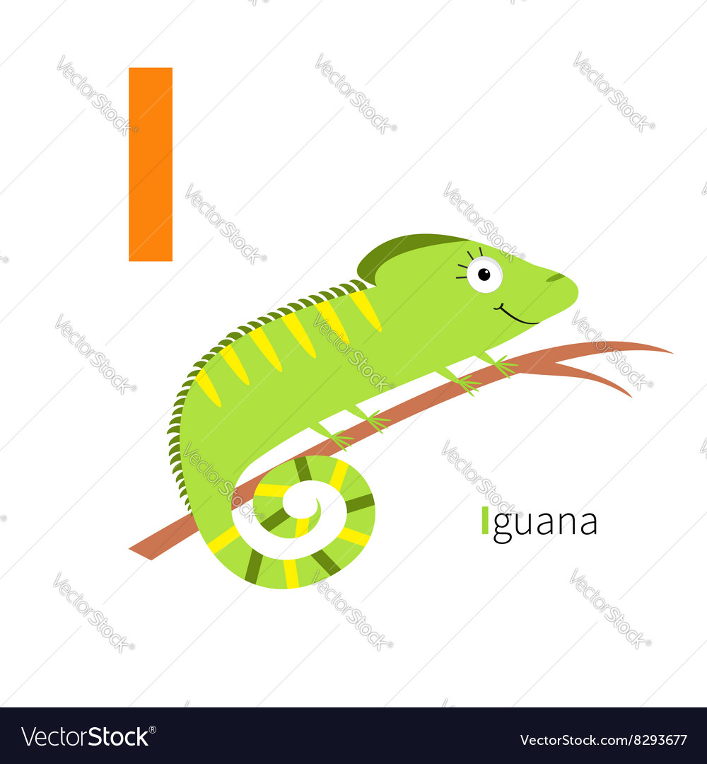 Letter i iguana zoo alphabet english abc with vector
