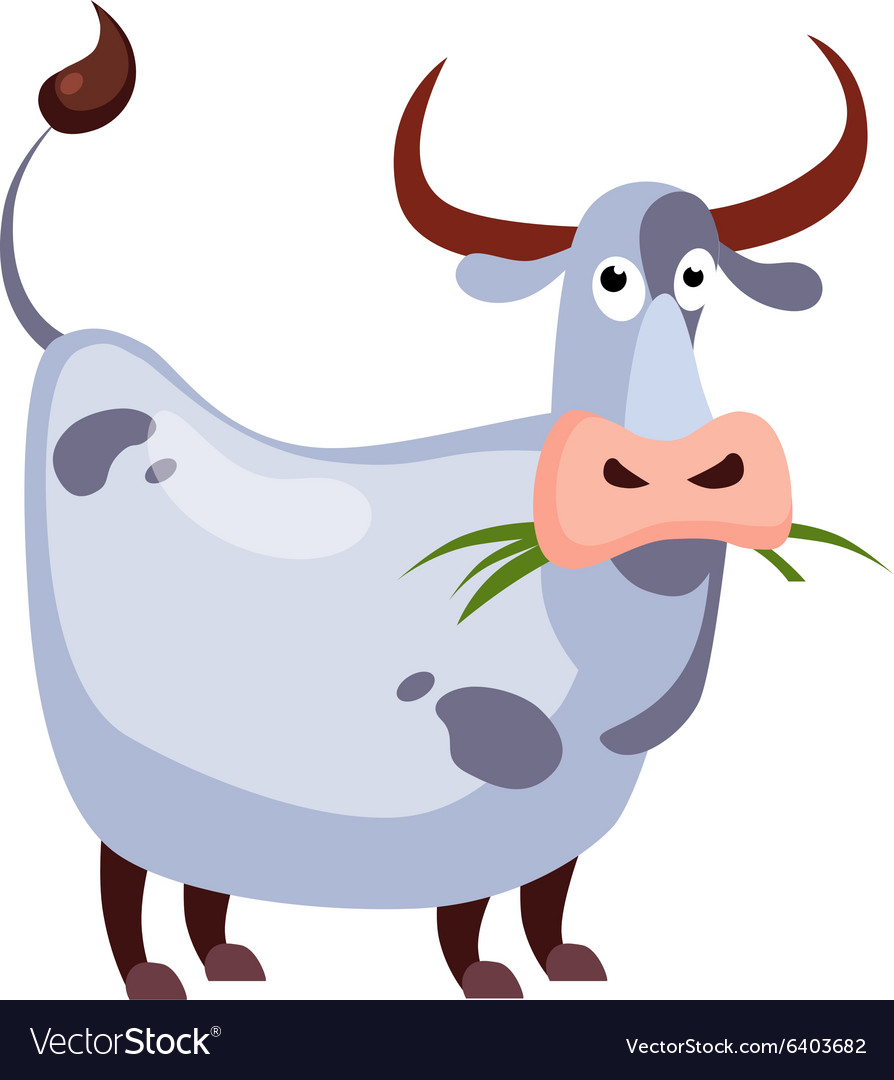 Cow chewing grass vector