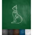 cat icon vector image
