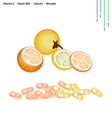 Bolo Maka Fruits with Vitamin C B3 and Calcium vector image