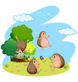 Four hedgehog in the field vector image
