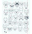 Set of sketches 24 dogs different breeds handmade vector image