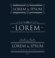 luxury logos template calligraphy flourishes vector image