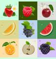 set of ripe fruits strawberry raspberry cherry vector image