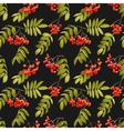 Autumn Rowan Berry Background Seamless Pattern vector image vector image