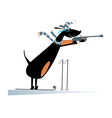 Dog a biathlon competitor vector image