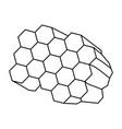 honeycomb cartoon vector image