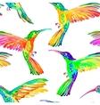 Watercolor hummingbirds seamless pattern vector image