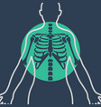 chest x-ray logo icon design vector image