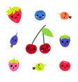 Cute Berries Character collection vector image