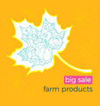 template autumn product vector image