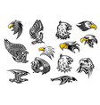 icons eagle hawk bird for mascot or tattoo vector image