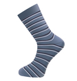 man socks vector image