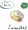 piece of emmental cheese head with cherry tomato vector image