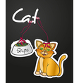 label pets containe cat an food vector image