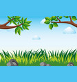 scene with grass in garden vector image