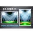 Set Backgrounds of baseball stadium vector image