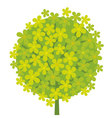 concept abstract green tree blossom vector image