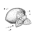 Lemons and mint Isolated drawing on white vector image