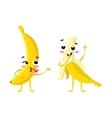 banana Cute fruit character couple vector image