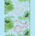 butterfly maze vector image