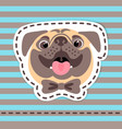 Fashion patch badges happy pug in bow tie on vector image