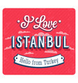 Vintage greeting card from istanbul vector image