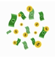Money and Golden Coin Rain vector image