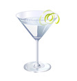cocktail drink vector image vector image