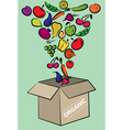 fruit and vegetables vector image