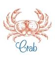 Red ocean crab with big pincers sketch icon vector image