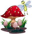 A dragonfly flying beside the mushrooms vector image vector image