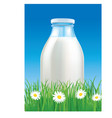milk glass bottle on grass with flowers vector image