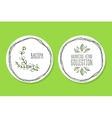 Ayurvedic Herb - Product Label with Bacopa vector image